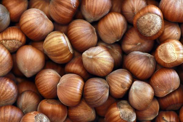 Nüsse, Hülsenfrüchte und Vollkornprodukte enthalten viel Magnesium. © Andreas Morlok / pixelio.de