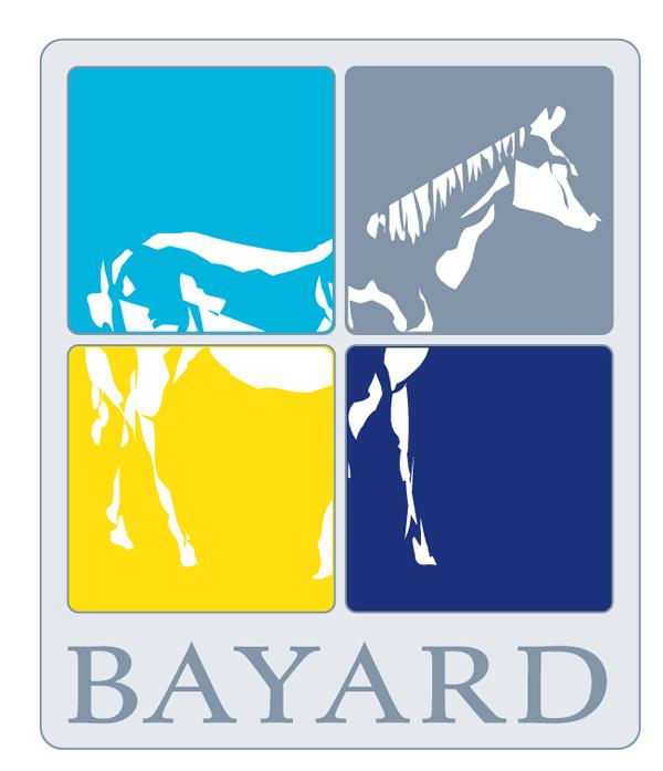 Lernprogramm-BAYARD